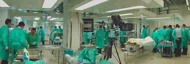"1. AOSpine ""ANTERIOR SPINE SURGERY"" Kurs in Innsbruck! : Anatomie ..."