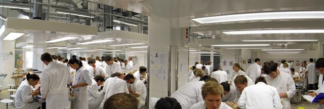 Ziele der Lehre : Anatomie-Innsbruck